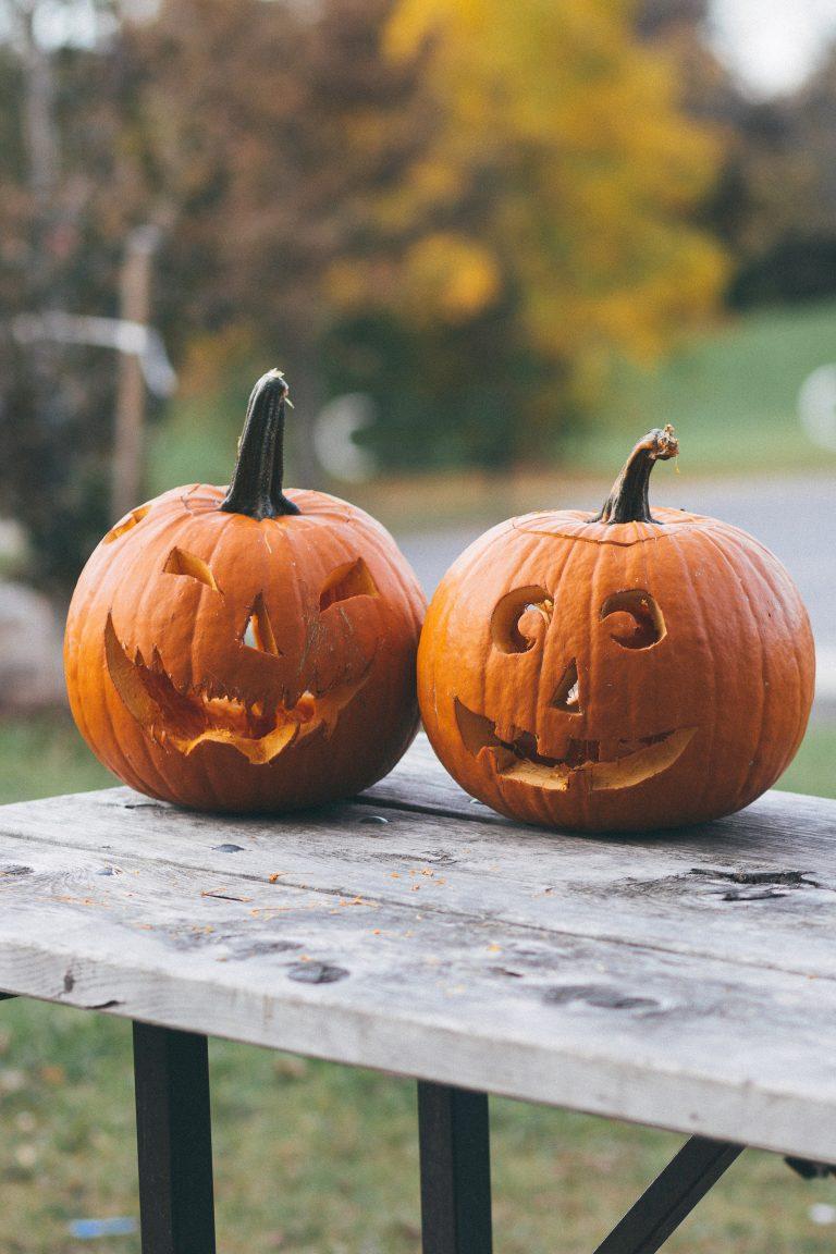 calabaza halloween pasos de viajera