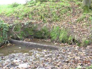 Holy Wells of Cork & Kerry st-bridgets-well-crosshaven